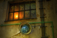 NAPPEX / okno